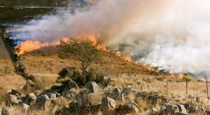 Za wypalanie traw nawet 30 tysięcy kary