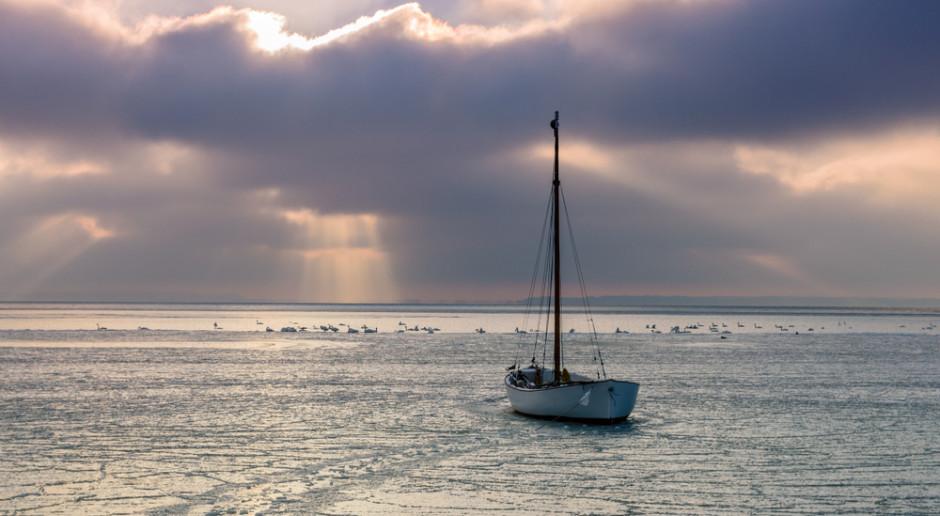 Grypa ptaków na Pomorzu: Pół tysiąca martwych ptaków
