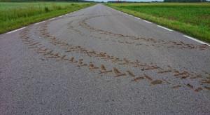 Błoto na drodze - posprzątaj albo słono płać!