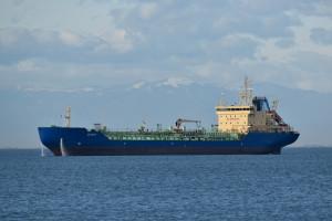 Hiszpania: decyzja o wybiciu krów transportowanych statkiem ponad dwa i pół miesiąca