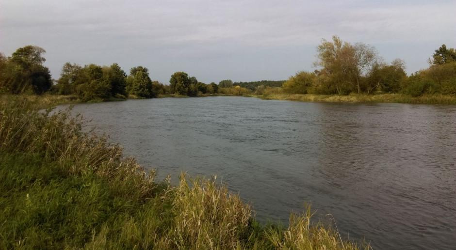Szef Wód Polskich: Nie przewidujemy powodzi, możliwe są podtopienia