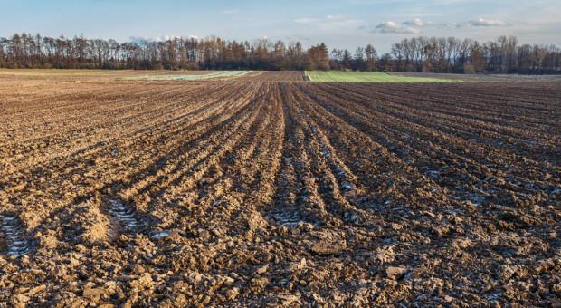 Na jakich zasadach można korzystać z państwowych gruntów rolnych?