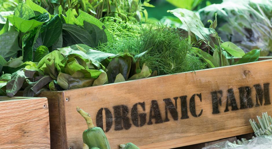 Organiczne farmy mogą wyżywić Europę