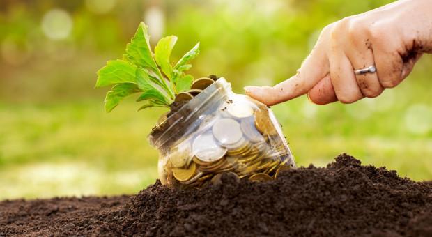 """Będą większe dopłaty do materiału siewnego """"w jakości ekologicznej"""""""