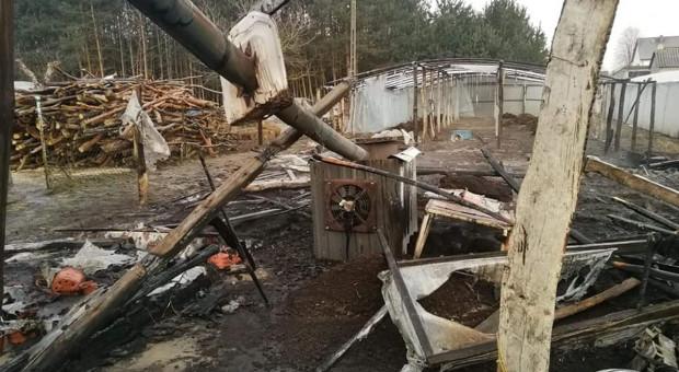 Ogrodnicy w pożarze stracili wszystko