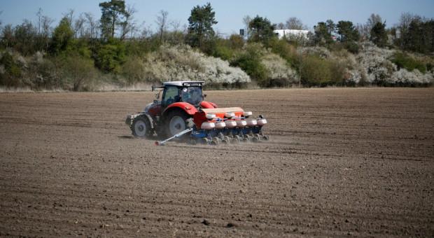 Rosja znacznie zwiększy obszar upraw pod zbiory w 2021 r.