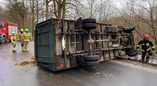 Przewróciła się ciężarówka z bydłem