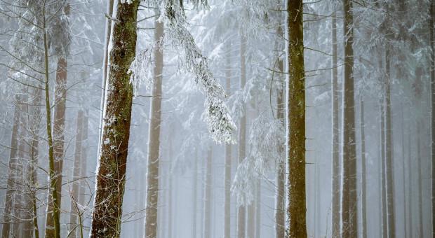 IMGW: wieczorem i w nocy śnieg na Pomorzu i w górach
