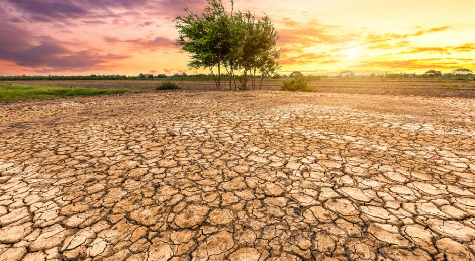 USA: Upał i potężna susza na zachodzie kraju