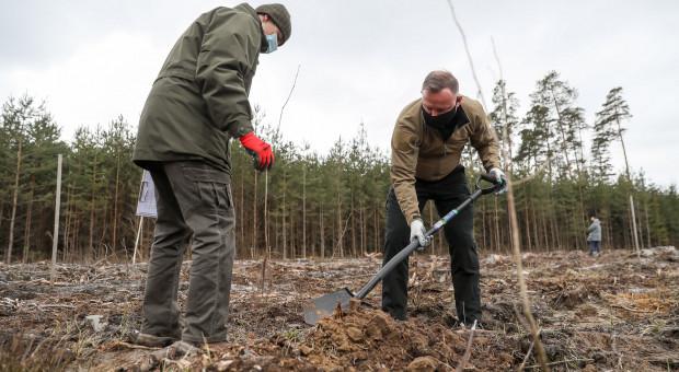 """Prezydent Duda zainaugurował akcję """"Łączą nas drzewa"""""""