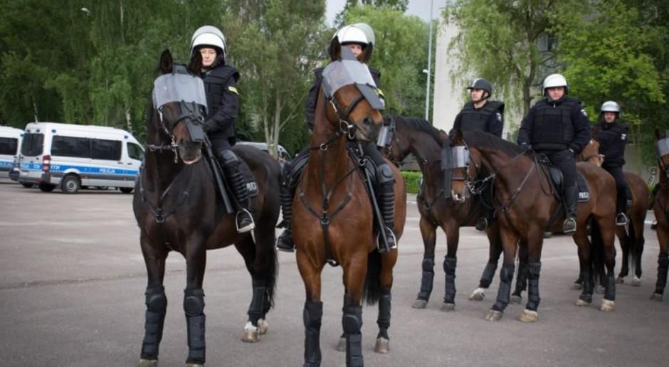 Poboży: projekt dot. zwierząt w służbach rozszerzony o Siły Zbrojne i Służbę Więzienną