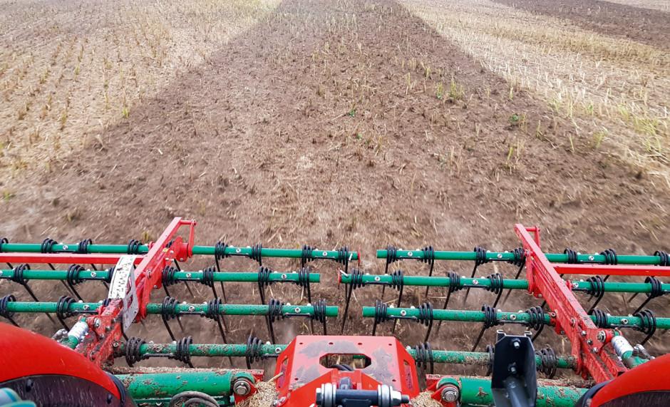 Do uprawy ściernisk rolnicy używają brony mulczowej, pobudza ona nasiona chwastów i samosiewów do kiełkowania oraz miesza resztki pożniwne z glebą