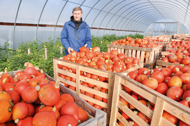 Łotwa –ziemia obiecana rolnictwa ekologicznego