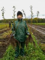 Kristine Ungure jest sezonowym pracownikiem wgospodarstwie Andrisa Krogzems iDiāny Krogzeme