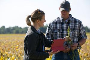 Trwa rekrutacja na rolnicze start-upy