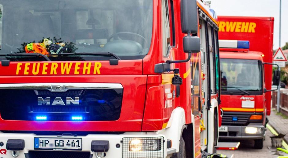 Pożar kilkunastu chlewni w Niemczech - zginęło tysiące świń