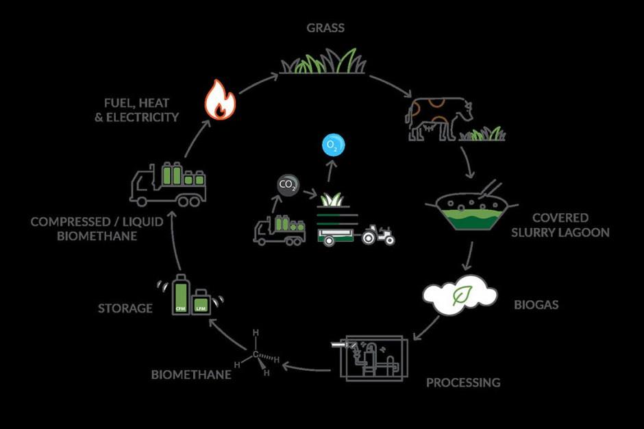 Obieg odnawialnej energii w gospodarstwie fot. Bennamann