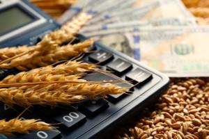 Zwyżka cen zbóż na światowych rynkach