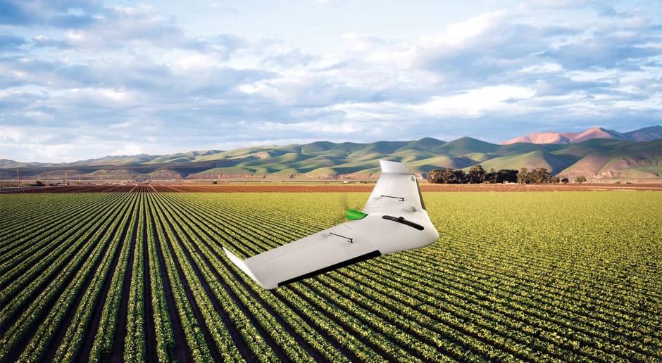 Użyty w eksperymencie dron mapujący Delair UX11 Ag może latać autonomicznie przez 55 minut, co odpowiada powierzchni 150 ha w normalnych warunkach. Jego cena to 16 tys. euro, fot. mat. prasowe