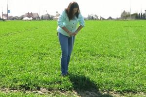 Jak zbadać zwięzłość gleby?