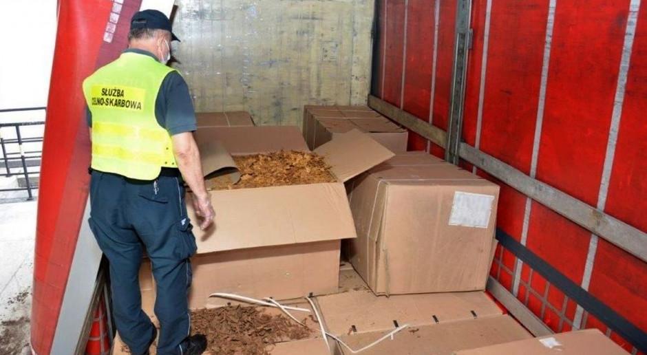 Nieopodatkowany tytoń w naczepie ciężarówki