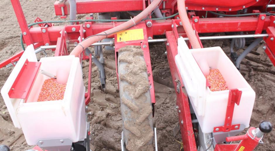 Rolnicy na zachodzie kraju sieją kukurydzę