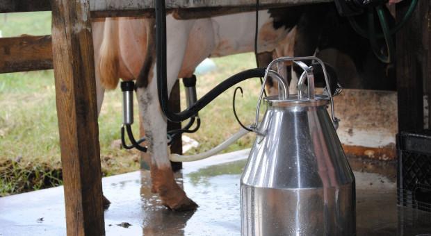 Wróciły podwyżki cen mleka w skupie
