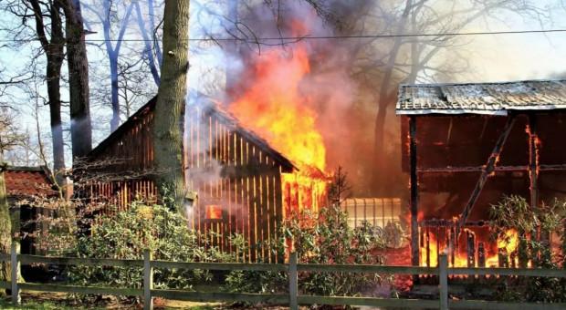 Milionowe szkody po pożarze na niemieckiej fermie
