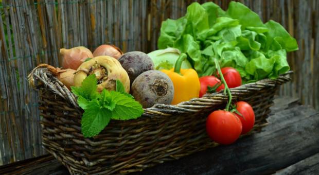 Francja nie osiąga swoich celów w rolnictwie ekologicznym