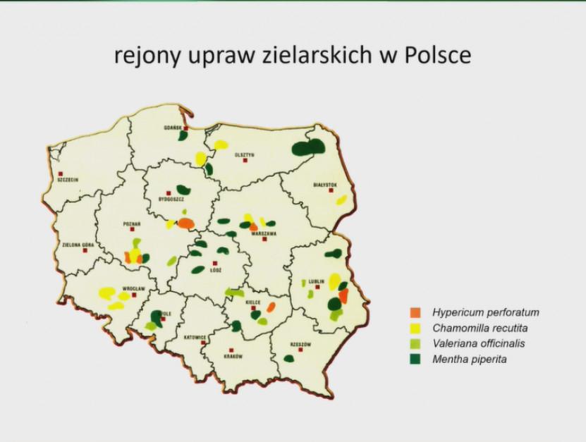 slajd z prezentacji - Jerzy Jambor, PKN