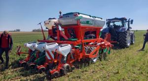 Uprawa kukurydzy Agro-Masz i Agrii według Zielonego Ładu