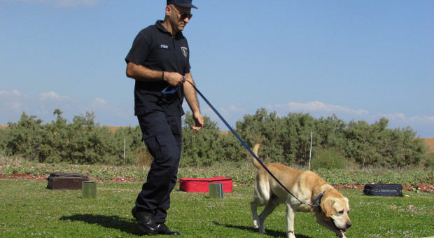 Policyjne psy i konie z emeryturą