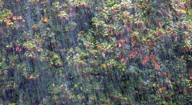 IMGW: intensywne opady deszczu na Pomorzu, wezbrania rzek na południu Polski