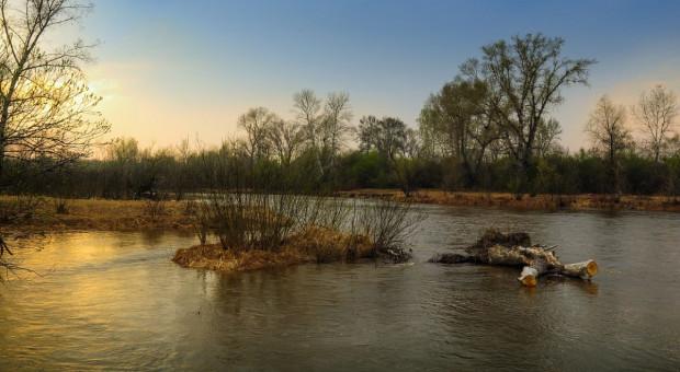 Opolskie: Ostrzeżenie przed wysokimi stanami wód na zlewni Prosny
