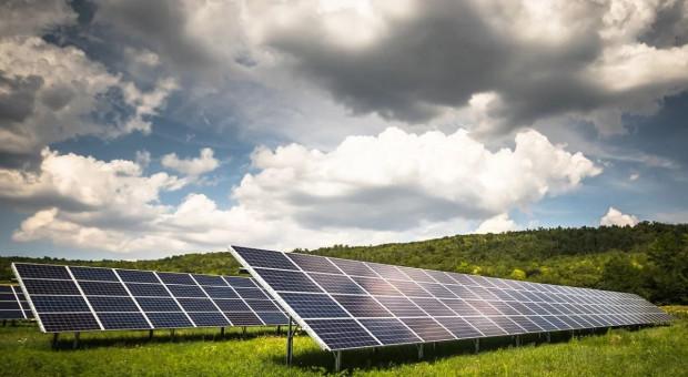 Ekolodzy przeciw farmom fotowoltaicznym - pożerają grunty orne