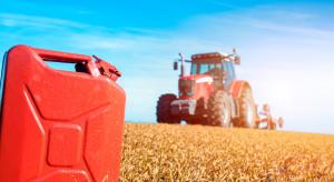 Polski Ład dla rolników: Większe dopłaty do paliwa oraz uproszczenia dla małych producentów