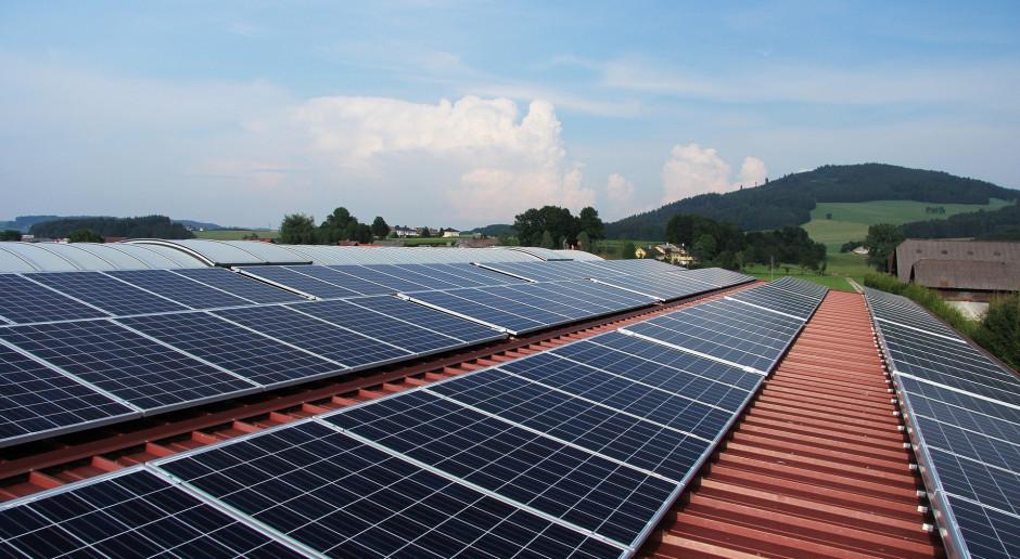 Alians OZE: autoprodukcja receptą na drożejącą energię elektryczną