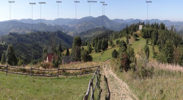 Kwietne łąki - program dopłat do ochrony bioróżnorodności