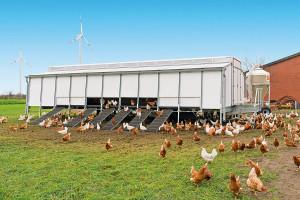 Ruchome kurniki produkowane są na obsadę od 200 do nawet 3000 niosek, Foto: Big Dutchman
