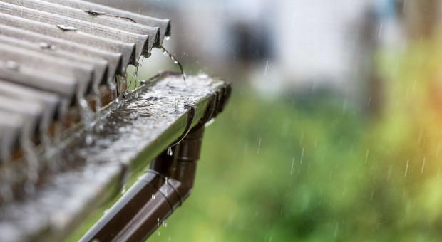 Przydomowe zbieranie deszczówki powstrzyma suszę i stepowienie Polski?