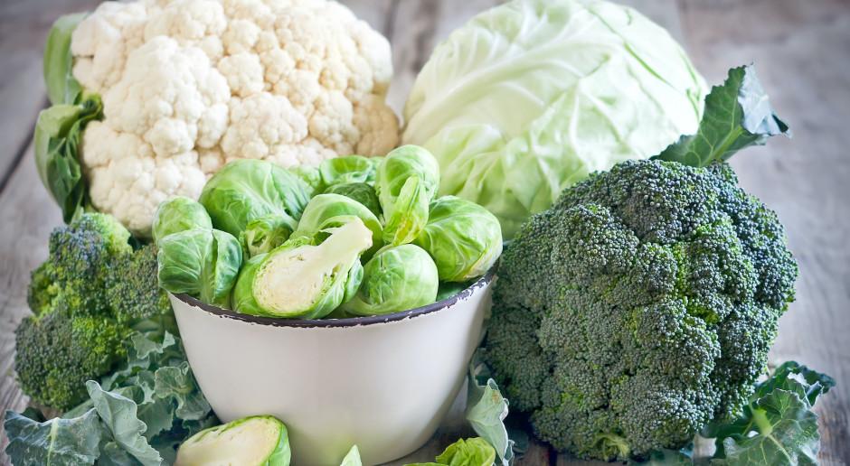 Zielono i warzywnie – co warto uwzględniać w codziennej diecie?