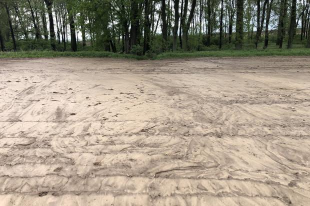 Ryc. 4. Nagromadzenie osadów na powierzchni gleby może doprowadzić do zaburzenia stosunków powietrzno-wodnych. /fot. Dawid Chwirot, VH Polska