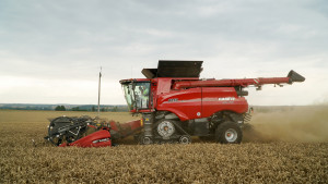 Kombajn Case 8250 zsystemem AFS Harvest kosi pszenicę owydajności przekraczającej 10 t/ha – wtakich warunkach automatyka wyraźnie pomaga