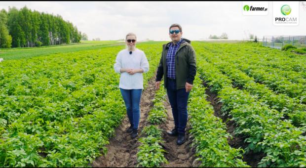 Od pola do stołu w uprawie ziemniaka - ochrona plantacji