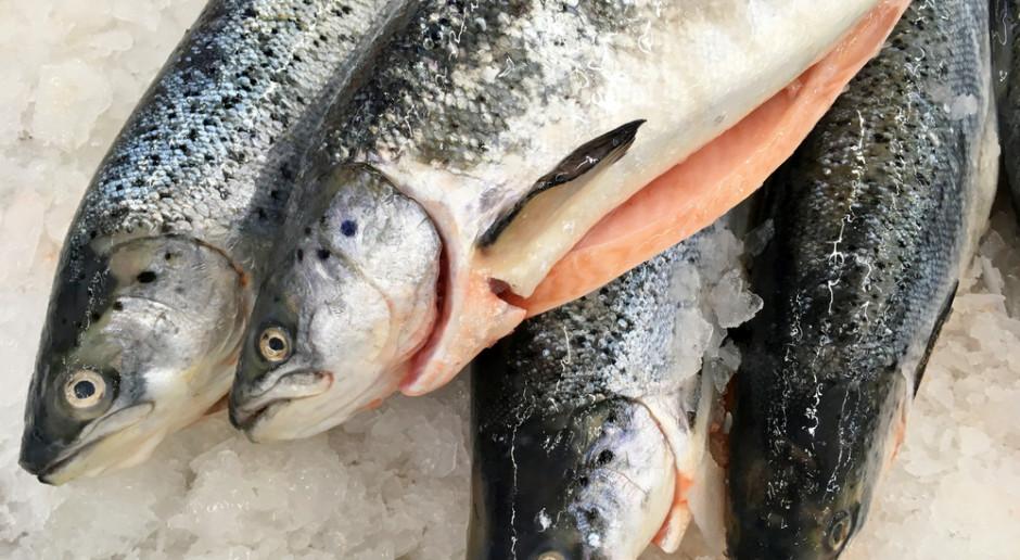 Rozprzestrzenia się wirus atakujący łososie