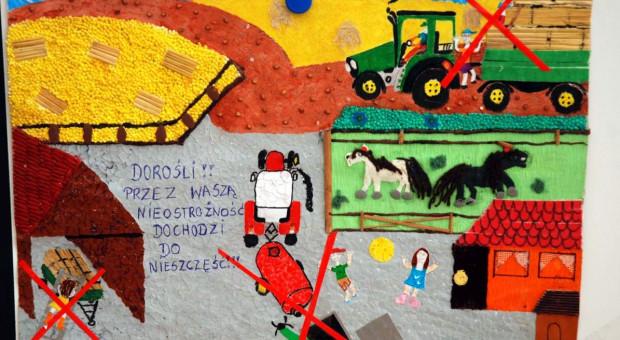 Bezpieczeństwo w gospodarstwie oczami dzieci [galeria]