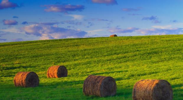 Jak zdefiniować rolnika, który otrzymuje ponad 5 tys. euro dopłat?