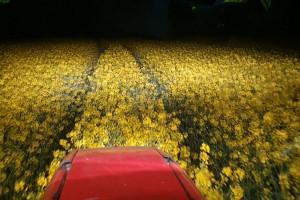 Systemy rolnictwa precyzyjnego - ważna jest nie tylko cena, cz.2