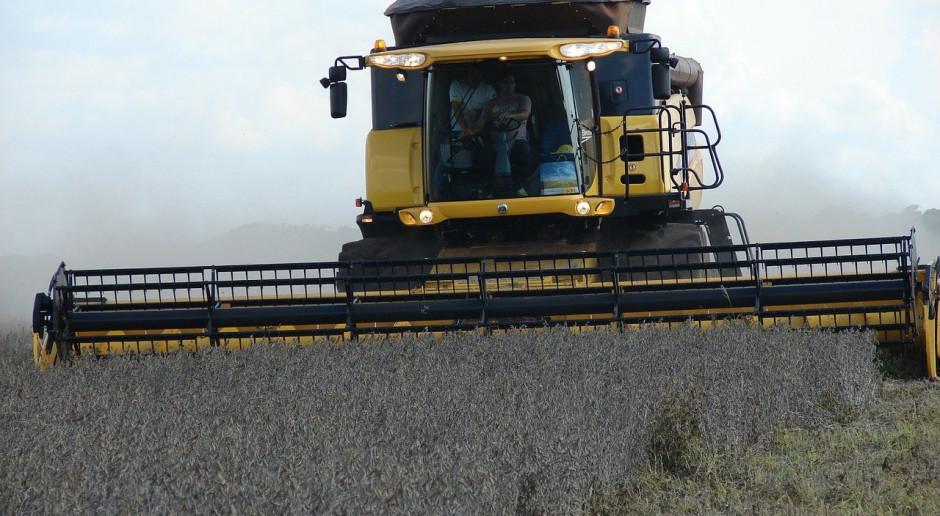 Amazonia: Powierzchnia uprawy soi wzrosła dziesięciokrotnie od 2000 r.
