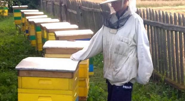Rolnik przed sądem za otrucie pszczół